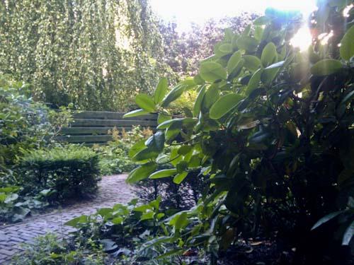 Uitzicht vanuit de trap in de tuin