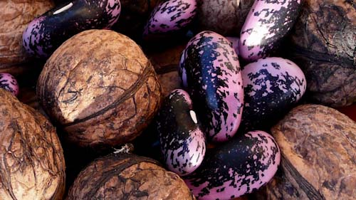 Bonen met walnoot
