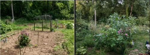 Tuin voor en na